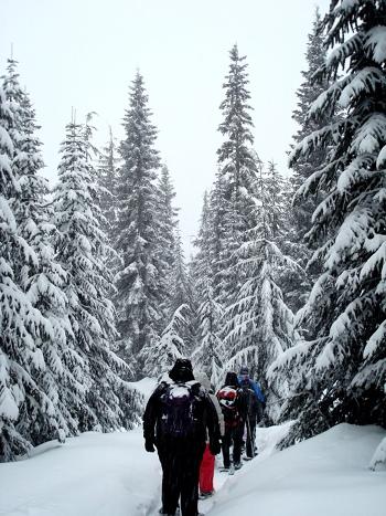 snowshoeing_sm