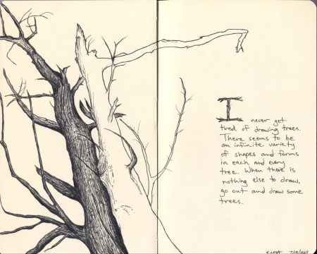 tree-sketch_Steve-Loya_sm