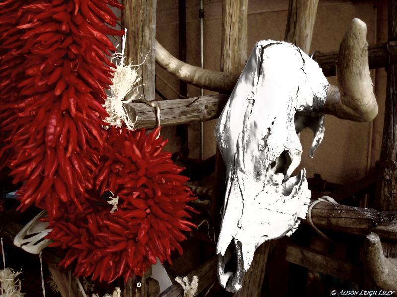 death-in-santa-fe_6260387685_o