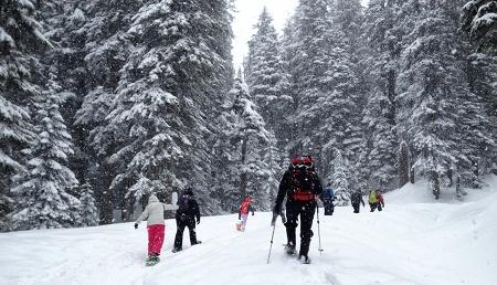 snowshoeing3_sm