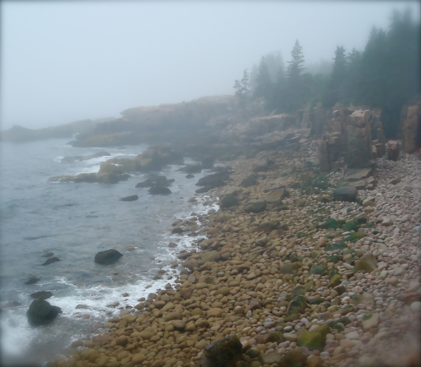 foggy_shore1