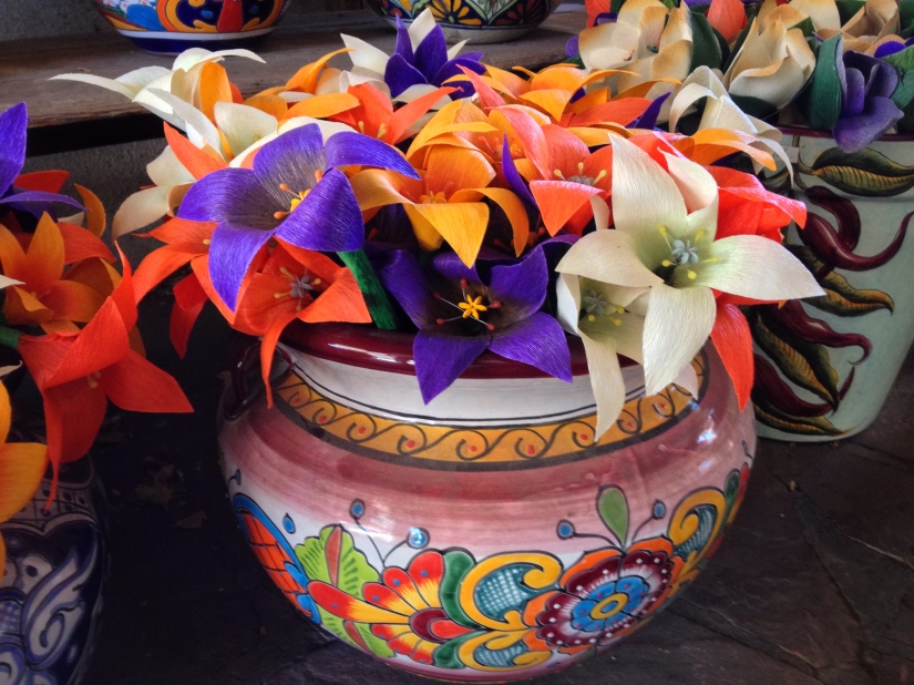 pots-full-of-flowers_29416912840_o